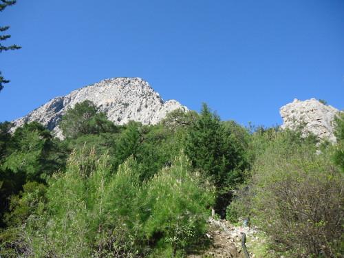 The ridge!