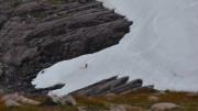 Skiing near Hells Lum